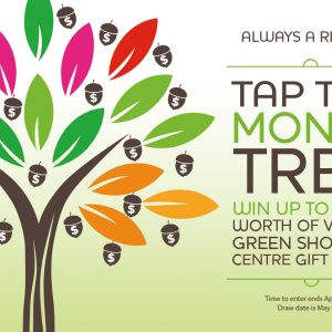 Tap the Money Tree Spring Event