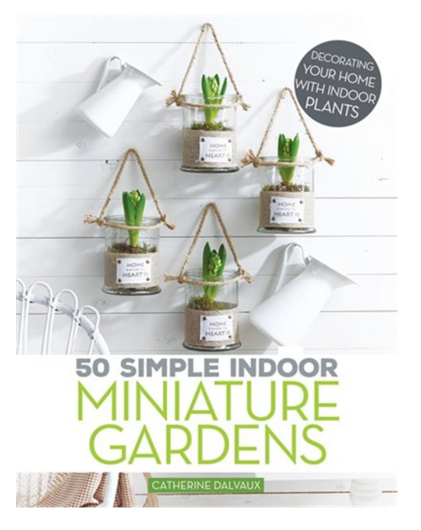 50 Simple Indoor Gardens